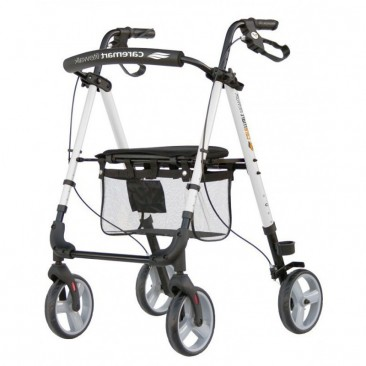 Caremart Litewalk